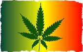 stock photo of jamaican flag  - A cannabis leaf and flag with white grunge border effect - JPG