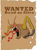 foto of cockroach  - cockroach on a poster with the title wanted - JPG