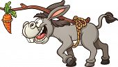 picture of donkey  - Donkey following a carrot tied to its back - JPG