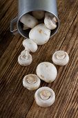 image of champignons  - Vertical photo of several fresh champignons spilled from old aluminum cup on worn wooden board table - JPG