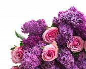 picture of purple white  - fresh purple Lilac flowers with pink roses close up  isolated on white background - JPG