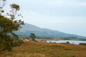 stock photo of galway  - View from the North end of Lough Corrib - JPG