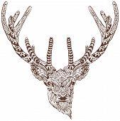 stock photo of antlers  - Antlered deer - JPG