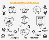 image of chicken  - Lots of vector chicken design elements for your work - JPG