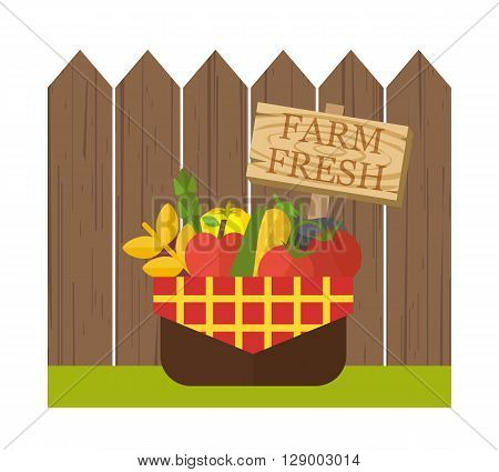 Organic food basket. Basket with fresh organic food near wooden fence. Organic vegetable basket with harvest. Food vector illustration