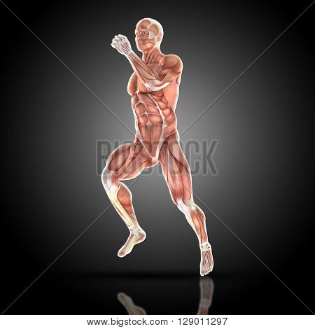 3D render of a medical figure bodybuilder with muscle map in a running pose