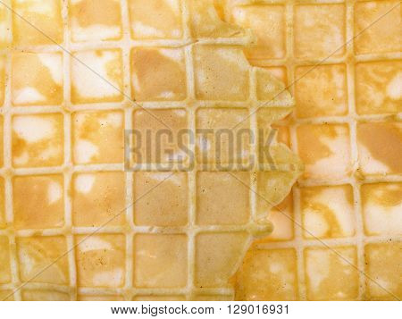 clouse up shot of yellow waffle texture