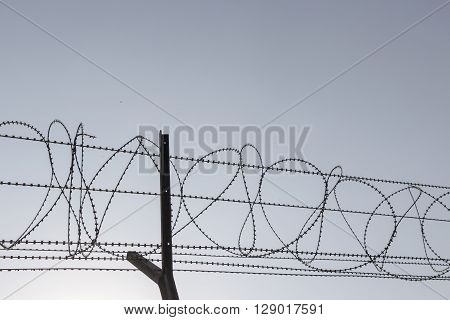 silhouette image of barbwire fence in sunny day