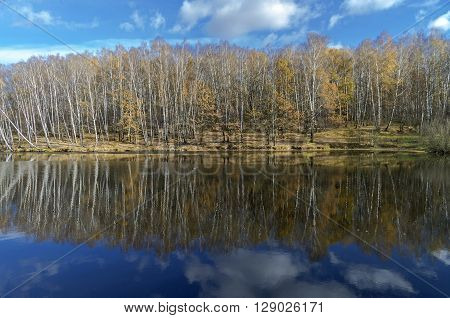 Reflection of trees and clouds in a pond. Sunny day in October. Moscow Russia.