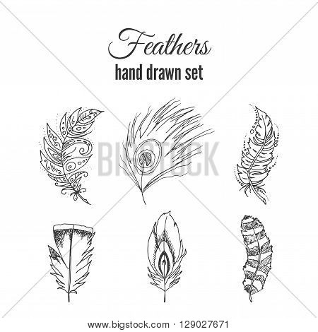 Vector feathers set. Hand drawn ethnic elements. Sketchy feather with ornate decoration.
