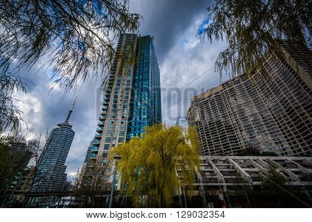 Trees And Modern Buildings At The Harbourfront In Toronto, Ontario.