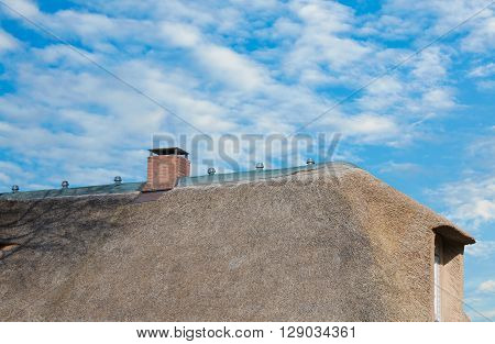 Thatched roof on the North Sea coast in closeup