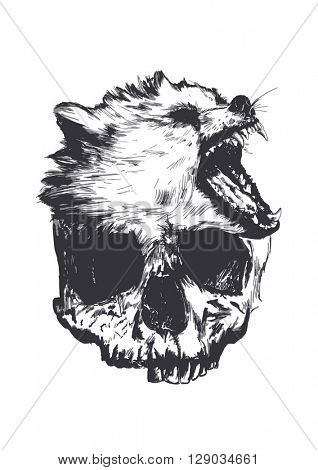 wolf and skull sketch illustration