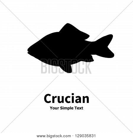 Vector illustration silhouette of crucian carp. Isolated on white background.