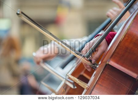 Closeup of musicians hands playing on a contrabass chords