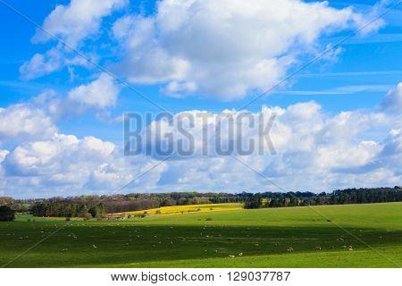 Beautiful Sunny Stonehenge Landscape England