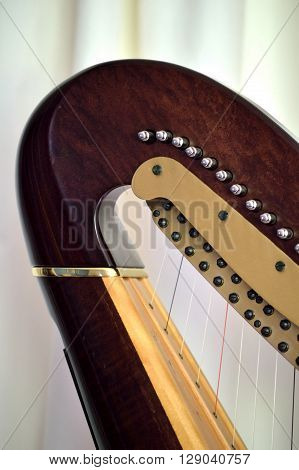 Pedal Harp Neck Tuning Mechanisms Closeup