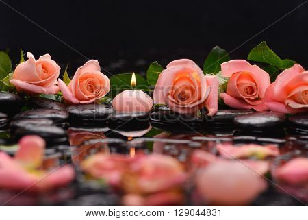 rose,petals with candle and therapy stones