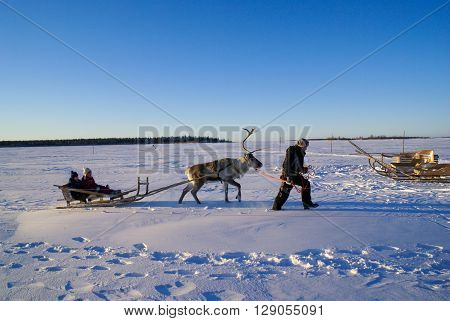 Children In Sleigh Pulled By Reindeer.