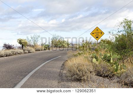 Saguaro National Park East's multiuse Share the Road sign. Cactus Forest Loop Drive is used by cars bikers hikers and wildlife. Location is Tucson Arizona USA.