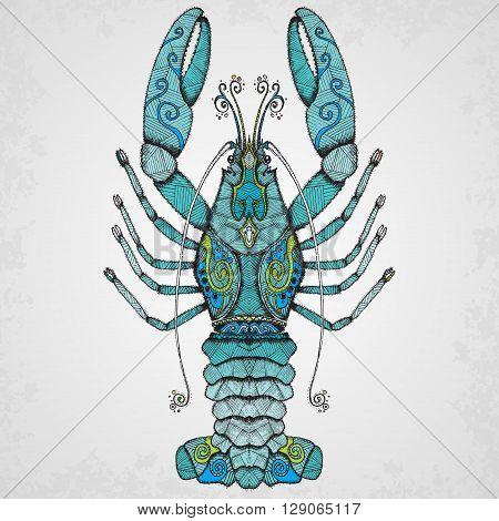 Lobster. Hand drawn isolated illustration vector illustration.