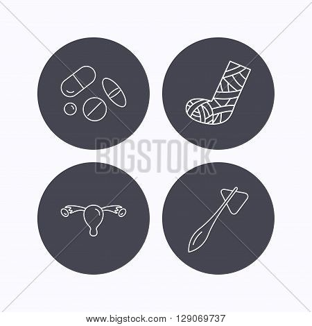 Hammer, broken leg and medical pills icons. Uterus and ovary linear sign. Flat icons in circle buttons on white background. Vector