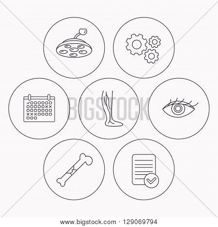 Eye, bone fracture and vein varicose icons. Surgical lamp linear sign. Check file, calendar and cogwheel icons. Vector