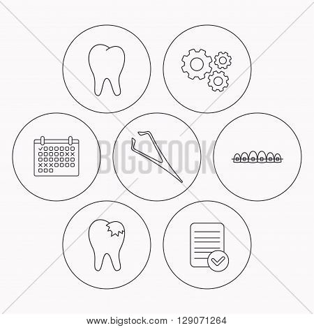 Dental braces, fillings and tooth icons. Tweezers linear sign. Check file, calendar and cogwheel icons. Vector