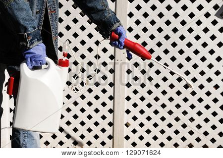 spray pesticide on the house exterior with glove