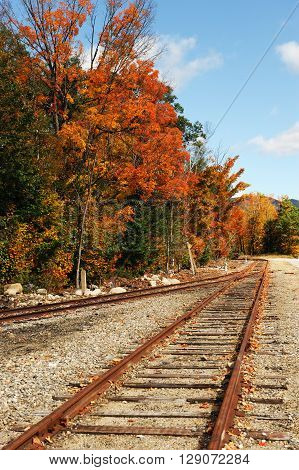 old railway and autumn forest scenery in sunny day