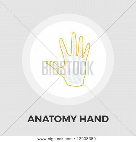 Anatomy hand Icon Vector. Flat icon isolated on the white background. Editable EPS file. Vector illustration.