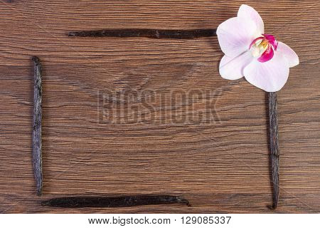 Colorful blooming orchid flower and fresh fragrant vanilla sticks pods on wooden backround copy space for text