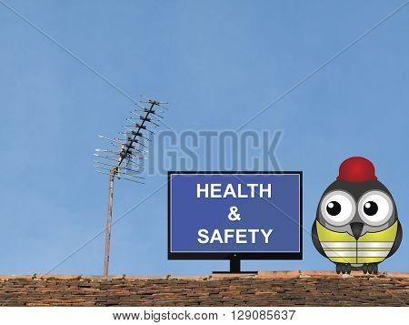 Comical bird construction worker watching health and safety induction programme perched on a rooftop against a clear blue sky