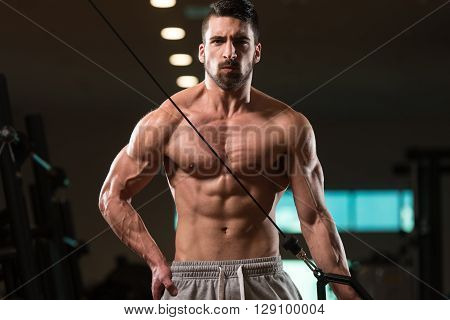 Young Man Exercising Triceps In The Gym