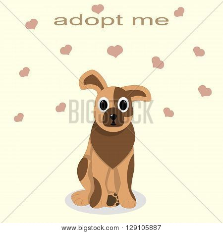 adoption of shelter dogs, give love and caring, kindness