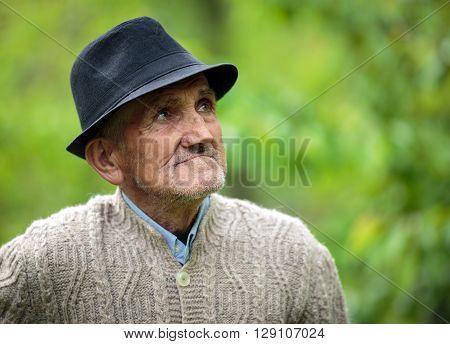 Old Man In The Garden