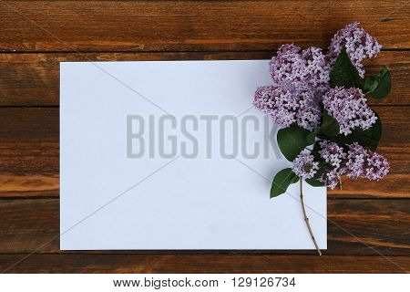 a white paper with flowers of lilac