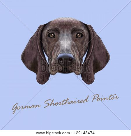 Vector Illustrated portrait of German Shorthaired Pointer dog. Cute brown face of domestic dog on blue background