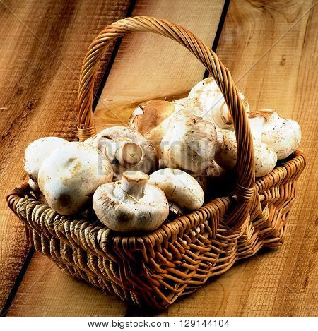 Basket Full of Perfect Big Raw Champignons closeup on Rustic Wooden background