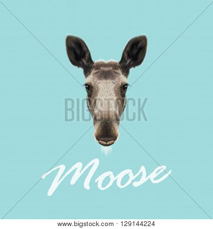 Vector Illustrated Portrait of Moose. Cute face of forest elk on blue background.