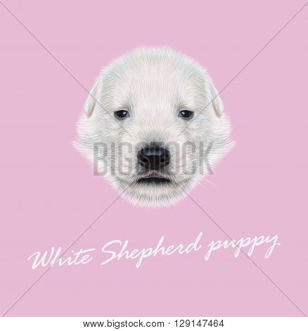 Vector Illustrated Portrait of White Sheperd puppy. Cute white fluffy face of domestic dog on pink background