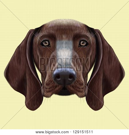 Illustrated portrait of German Shorthaired Pointer dog. Cute brown face of domestic dog on yellow background