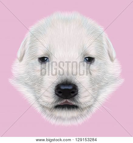 Illustrated Portrait of White Sheperd puppy. Cute white fluffy face of domestic dog on pink background