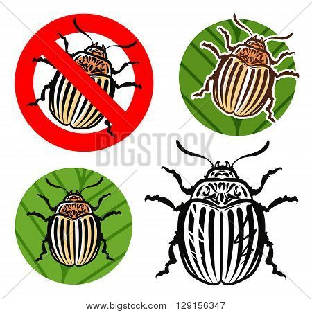 Colorado potato beetle and prohibition sign. vector illustration