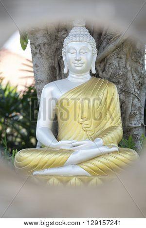Silver Buddha Statue With Golden Robe In Garden