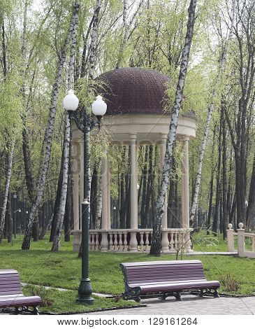 Arbour among the birch trees benches and lanterns in the park in spring