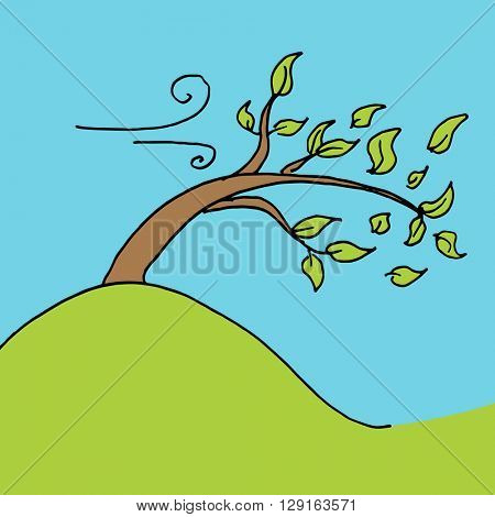 An image of a leaves blown off tree on a windy day.