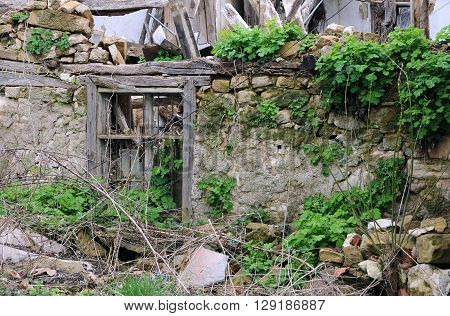 Abandoned house in the Bulgarian village in the springtime