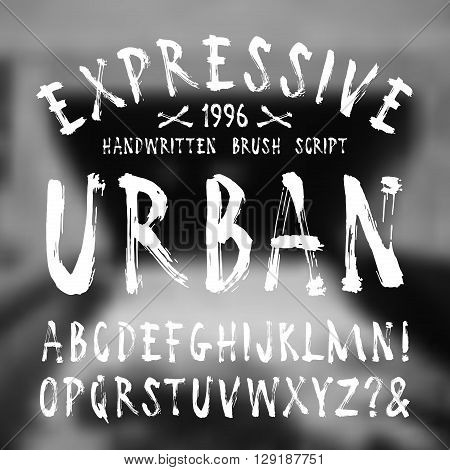 Expressive  handwritten brush font on blurred background