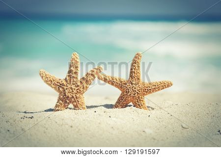 Two cross-processed starfish on the beach with ocean waves in background
